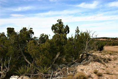 Torrance County Residential Lots & Land For Sale: 62 Inca Loop