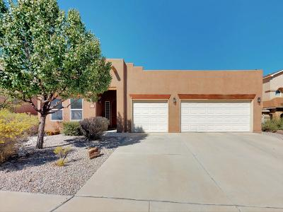 Bernalillo County Single Family Home For Sale: 7143 Glyndon Trail NW
