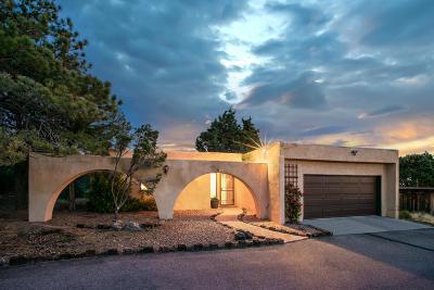 Sandia Heights Single Family Home For Sale: 432 Live Oak Road NE