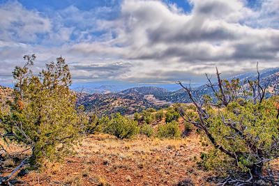 Placitas Residential Lots & Land For Sale: 142 Diamond Tail Lot 45