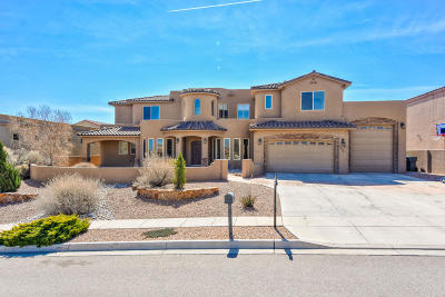 rio ran Single Family Home For Sale: 3508 Greystone Ridge Drive SE
