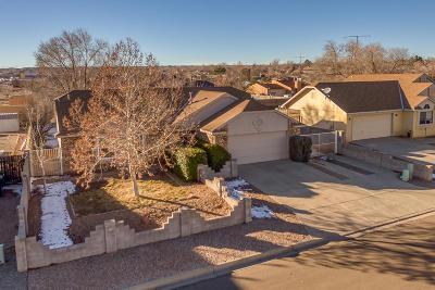 Rio Rancho Single Family Home For Sale: 915 Buckboard Road SE