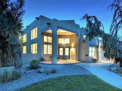 Albuquerque Single Family Home For Sale: 7303 New Dawn Court NE