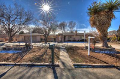 Albuquerque Single Family Home For Sale: 2024 Calle Pajaro Azul NW