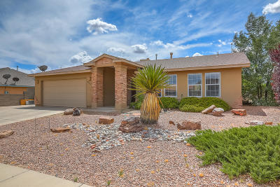 Albuquerque, Rio Rancho Single Family Home For Sale: 6924 Glen Hills Drive