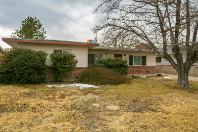 Bernalillo County Single Family Home For Sale: 1703 Ross Place SE