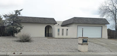 Rio Rancho Single Family Home For Sale: 2107 Forest Trail