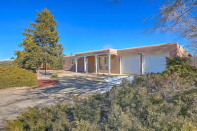 Sandoval County Single Family Home For Sale: 4611 Los Reyes Road SE