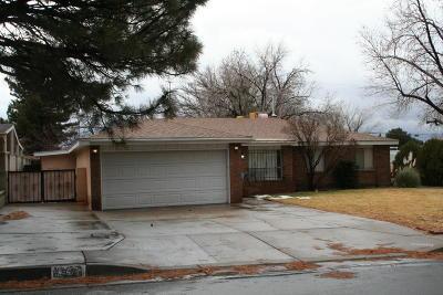 Bernalillo County Single Family Home For Sale: 8900 Delamar Avenue NE