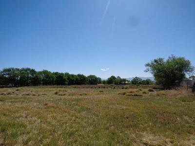 Valencia County Residential Lots & Land For Sale: 21 Chavez Road