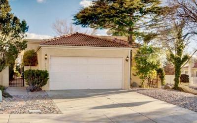Bernalillo County Single Family Home For Sale: 11300 Academy Ridge Road NE