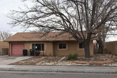 Bernalillo County Single Family Home For Sale: 10416 Love Avenue NE