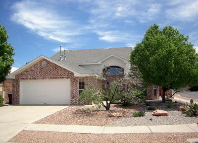 Bernalillo County Single Family Home For Sale: 1146 Tony Sanchez Drive SE