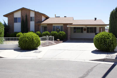 Bernalillo County Single Family Home For Sale: 5908 Tioga Road NW