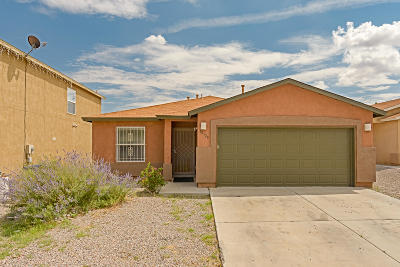 Albuquerque Single Family Home For Sale: 10128 Range Road SW