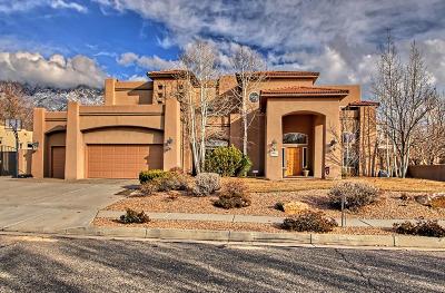 Albuquerque Single Family Home For Sale: 8604 Madras Drive NE