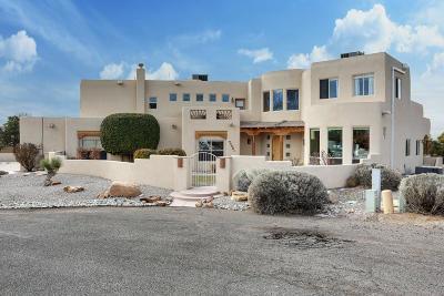 Albuquerque Single Family Home For Sale: 8501 San Diego Court NE