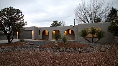 Bernalillo County Single Family Home For Sale: 9901 Academy Knolls Drive NE