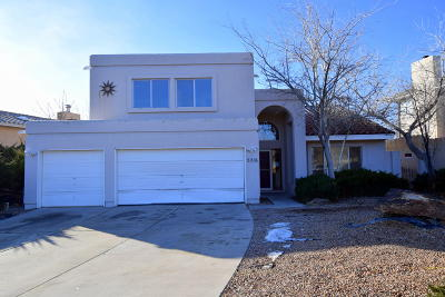 Bernalillo County Single Family Home For Sale: 5216 Chesapeake Road NW
