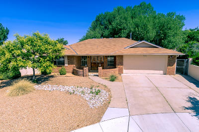 Albuquerque Single Family Home For Sale: 9316 Tasco Drive NE