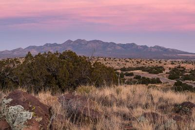 Sandoval County Residential Lots & Land For Sale: 108 Wild Primrose
