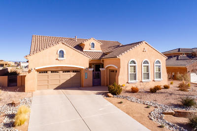 Rio Rancho Single Family Home For Sale: 2401 Desert View Road NE