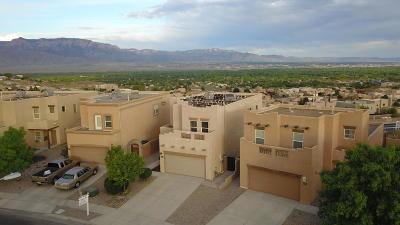 Rio Rancho Single Family Home For Sale: 1334 Mountain Vista Drive SE