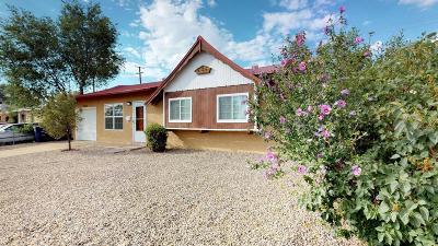 Albuquerque Single Family Home For Sale: 10813 San Jacinto Avenue NE