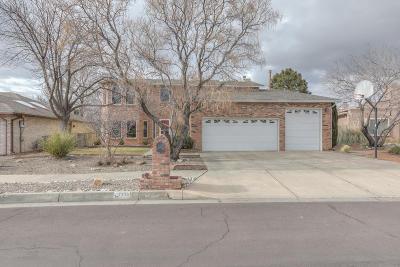 Albuquerque Single Family Home For Sale: 7419 Lew Wallace Drive NE