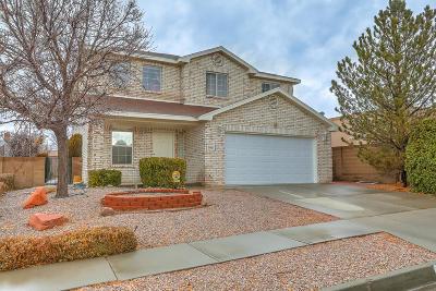 Bernalillo County Single Family Home For Sale: 9901 Irbid Road NE