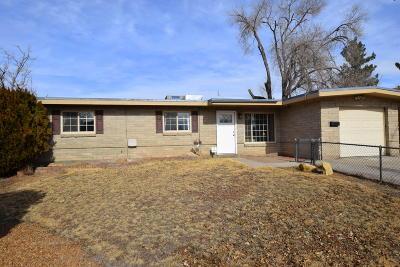 Bernalillo County Single Family Home For Sale: 11213 Ralph Avenue NE
