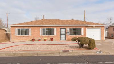 Bernalillo County Single Family Home For Sale: 8913 Lexington Avenue NE