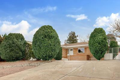 Bernalillo County Single Family Home For Sale: 1706 Washington Street NE