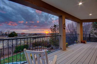 Albuquerque Single Family Home For Sale: 12064 Irish Mist Avenue NE