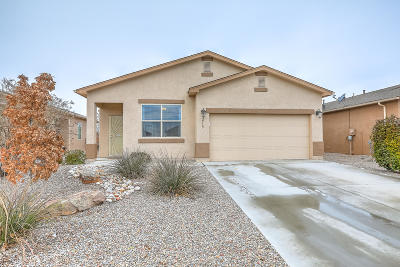 Rio Rancho Single Family Home For Sale: 2719 Blue Moon Place NE