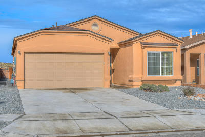 Rio Rancho Single Family Home For Sale: 2965 Wilder Loop NE