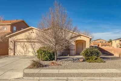 Rio Rancho Single Family Home For Sale: 1813 Cantera Street SE