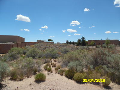 Sandoval County Residential Lots & Land For Sale: 417 Albor Circle NE