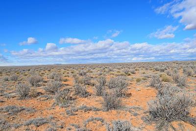 Valencia County Residential Lots & Land For Sale: Lot 19 Rio Grande Estates #O