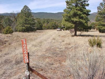 Cedar Crest Residential Lots & Land For Sale: 12229 State Highway 14