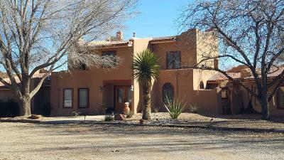 Belen, Los Lunas Single Family Home For Sale: 70 Andres Sanchez Road