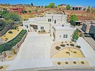 Albuquerque Single Family Home For Sale: 4819 San Timoteo Avenue NW
