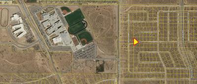 Albuquerque Residential Lots & Land For Sale: U16B13L49 Junipero Road NW
