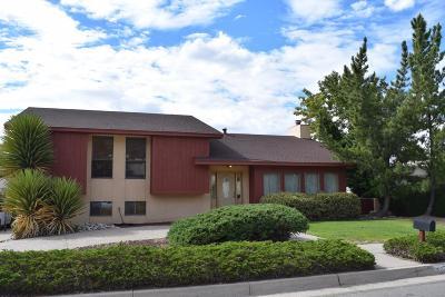 Albuquerque Single Family Home For Sale: 1023 Oro Real NE