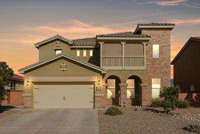 Rio Rancho Single Family Home For Sale: 3608 Soldotna Drive NE