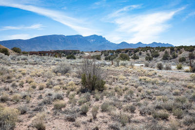 Placitas Residential Lots & Land For Sale: Petroglyph Trail