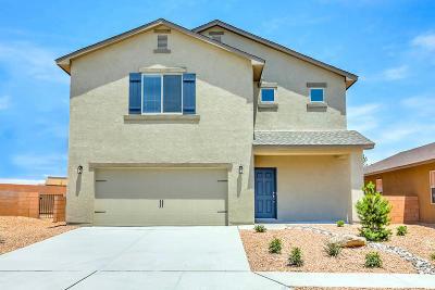 Albuquerque Single Family Home For Sale: 10028 Artemsia Avenue SW