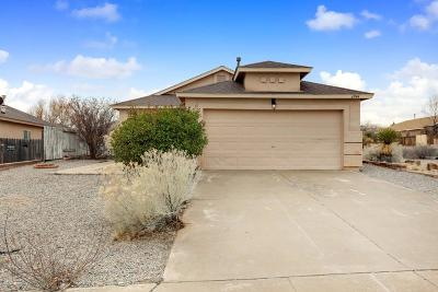 Rio Rancho Single Family Home For Sale: 6944 Angela Drive NE