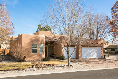 Albuquerque Single Family Home For Sale: 2716 Pueblo Grande Trail NW