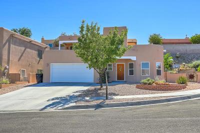 Albuquerque Single Family Home For Sale: 4228 New Vistas Court NW